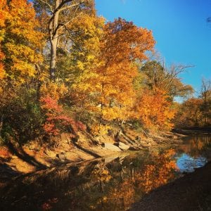 fall-along-the-canal